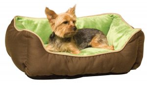 green dog bed with puppy