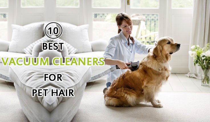 Best Vacuum Cleaner For Pet Hair 2019 Upright Handheld
