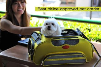 best airlines approved pet carrier
