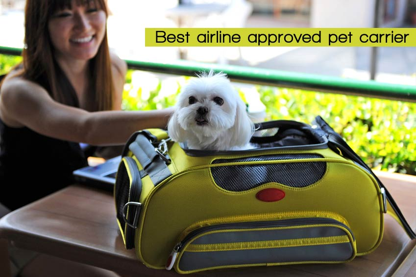 Airline Pet Carrier For  Dogs