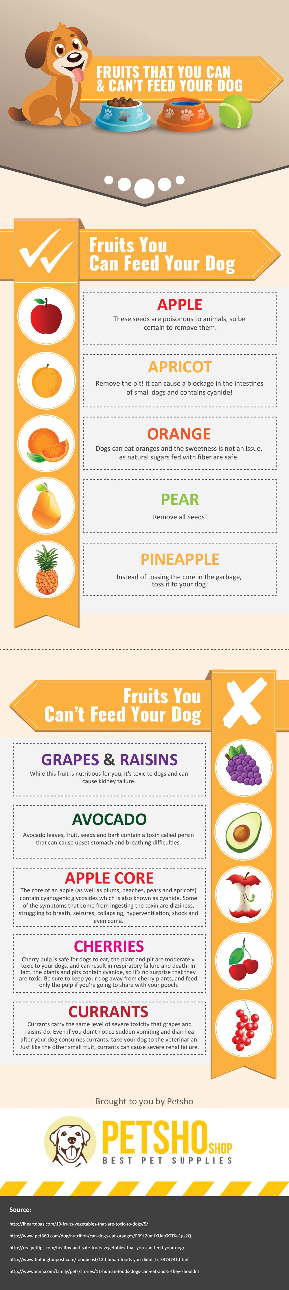 can dogs eat fruit infographic