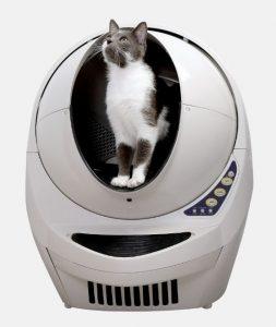 cat in LR