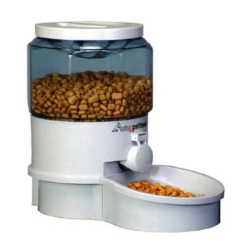 Best Dry Food For A Dog Who Has Indigestion Problems