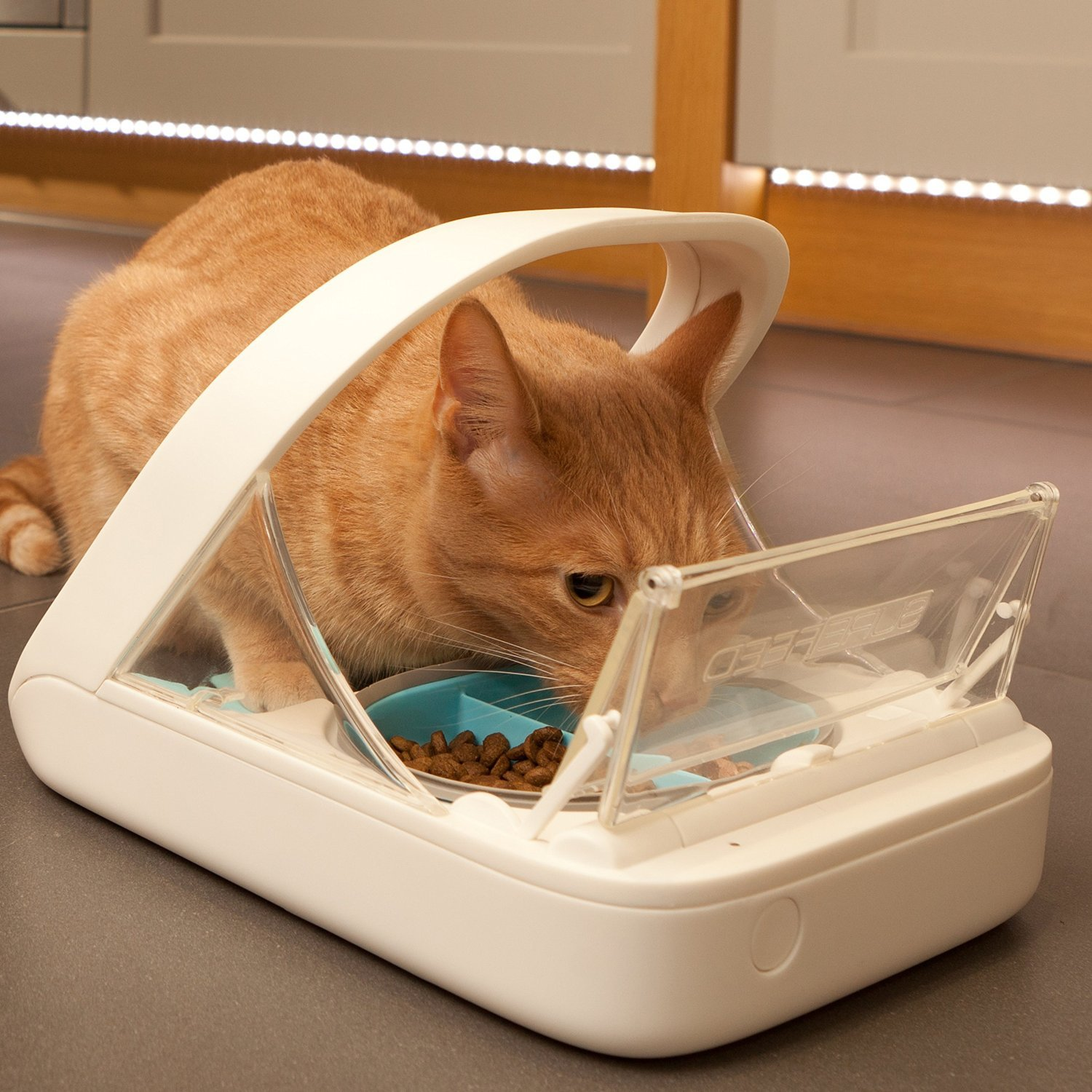 Surefeed Microchip Pet Feeder My Full Review