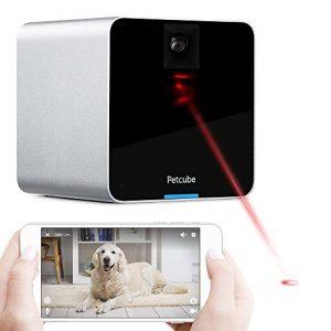 petcube 720 camera