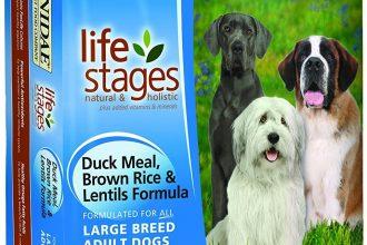 Healthy canine food