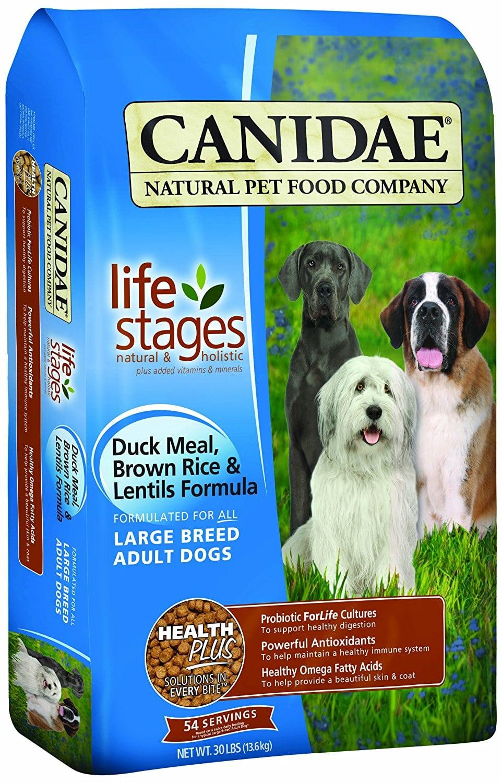 High Protein Dog Food