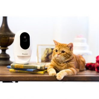 pawbo pet cam review