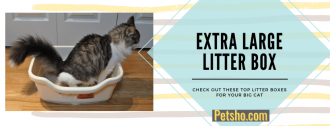 litter boxes for large cat