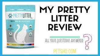image of pretty litter