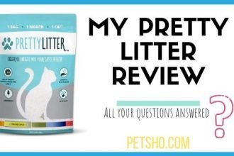 image of pretty litter