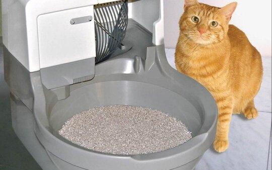 advance cat litter box